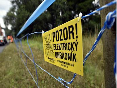 Elektrický ohradník kolem zasaženého území je hotov