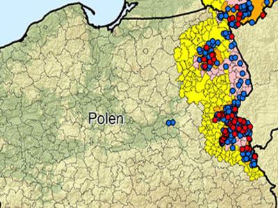 Africký mor prasat zjištěn u Varšavy