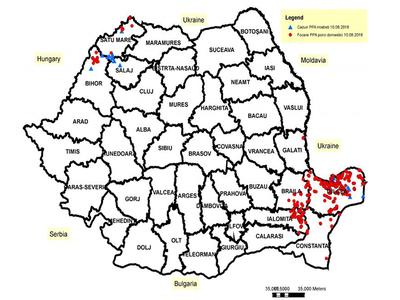 Vývoj nákazové situace AMP v Rumunsku