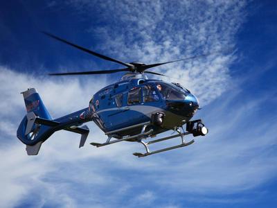 Divočáky na Zlínsku monitorují veterináři z vrtulníku
