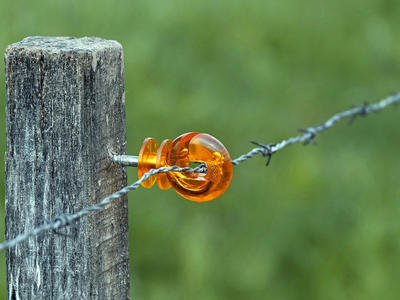 Braniborsko postaví plot na hranici s Polskem kvůli AMP