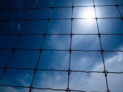 Braniborsko: k elektrickému ohradníku na hranicích s Polskem přibude pevný plot