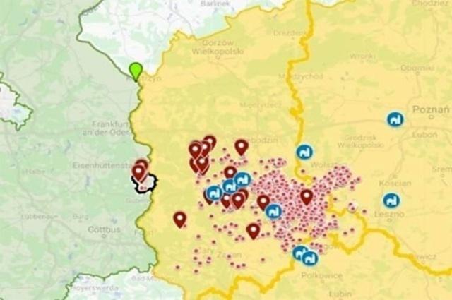 Německo: AMP zjištěn u divočáka v další oblasti